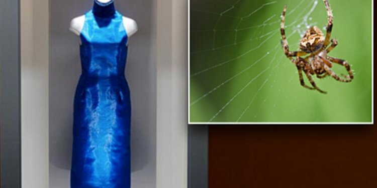 Dress Made Out Of Spider