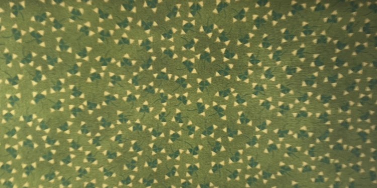 Green and Tan Fabric