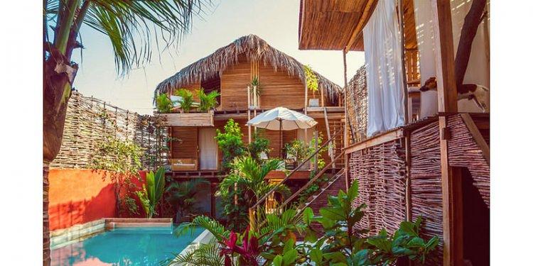 Ma cabane dans les arbres au Pérou (+ surf et océan Pacifique