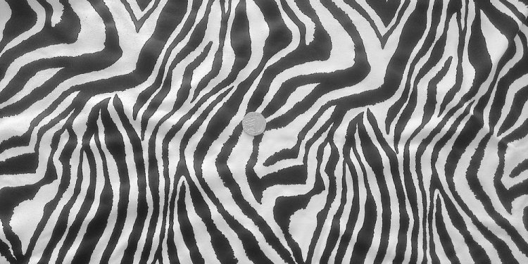 Zebra Print 4-Way stretch Matt