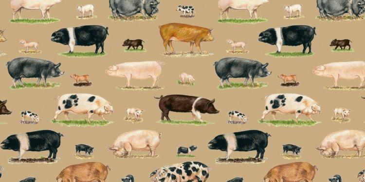 Pig Fabric Makower Farm