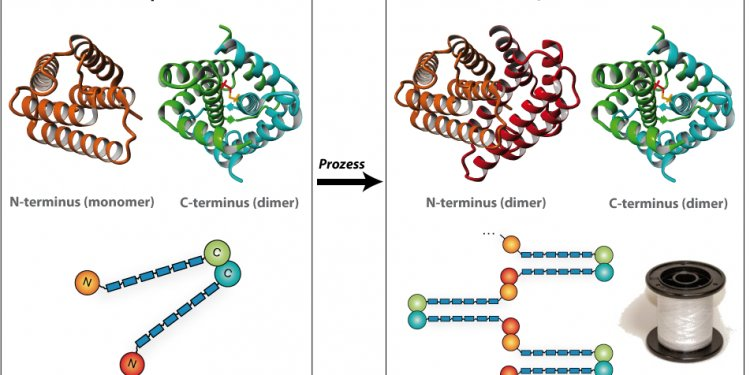 Silk By NMR Allowed To Develop