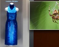 Spider silk Dress